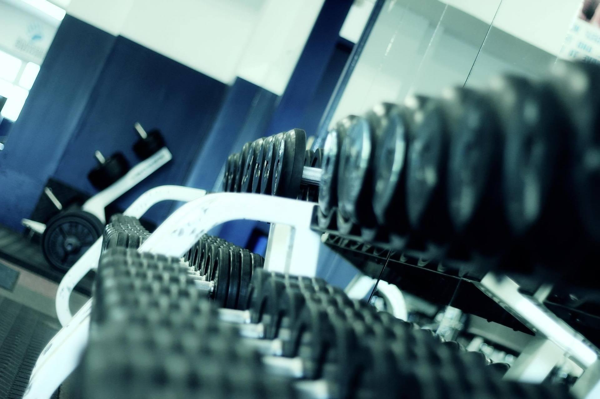 poids-sport-musculation-études